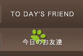TO DAY'S FRIEND